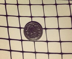 siatka moneta